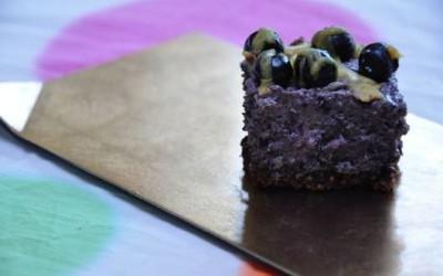 Raw blueberry bliss treats